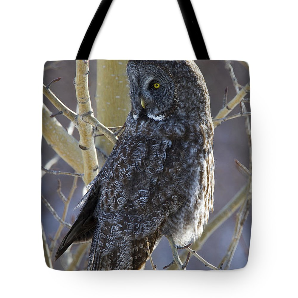 Doug Lloyd Tote Bag featuring the photograph Swivel Neck by Doug Lloyd