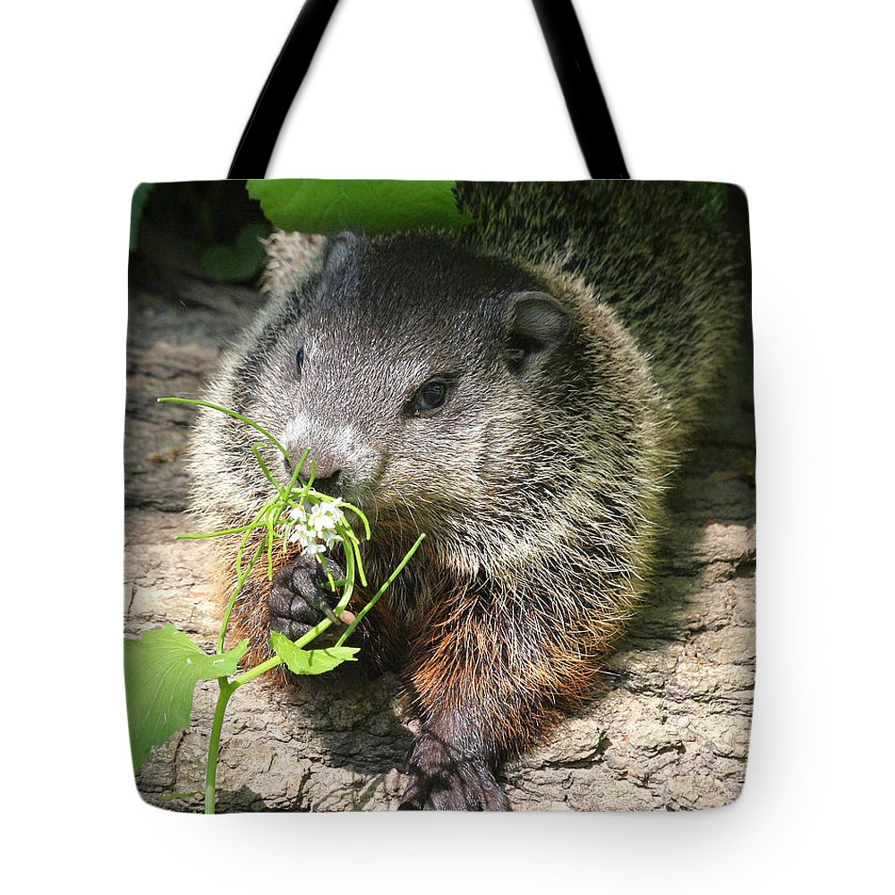 Woodchuck Tote Bag featuring the photograph Taking Time To Smell The Flowers by Doris Potter