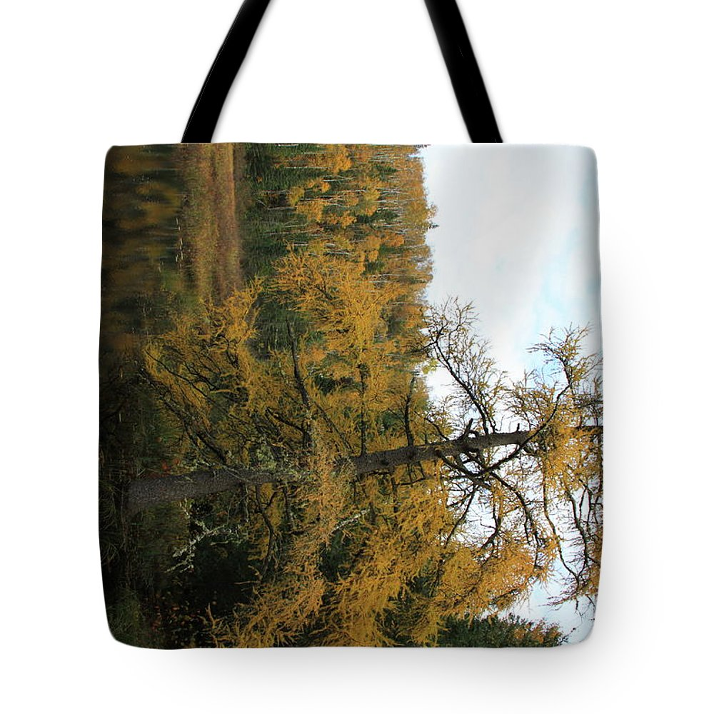 Tote Bag featuring the photograph Tamarack In Fall by Joi Electa