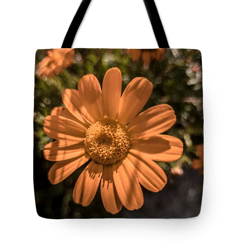 Background Tote Bag featuring the photograph Tanacetum Painted In Red by Michael Goyberg