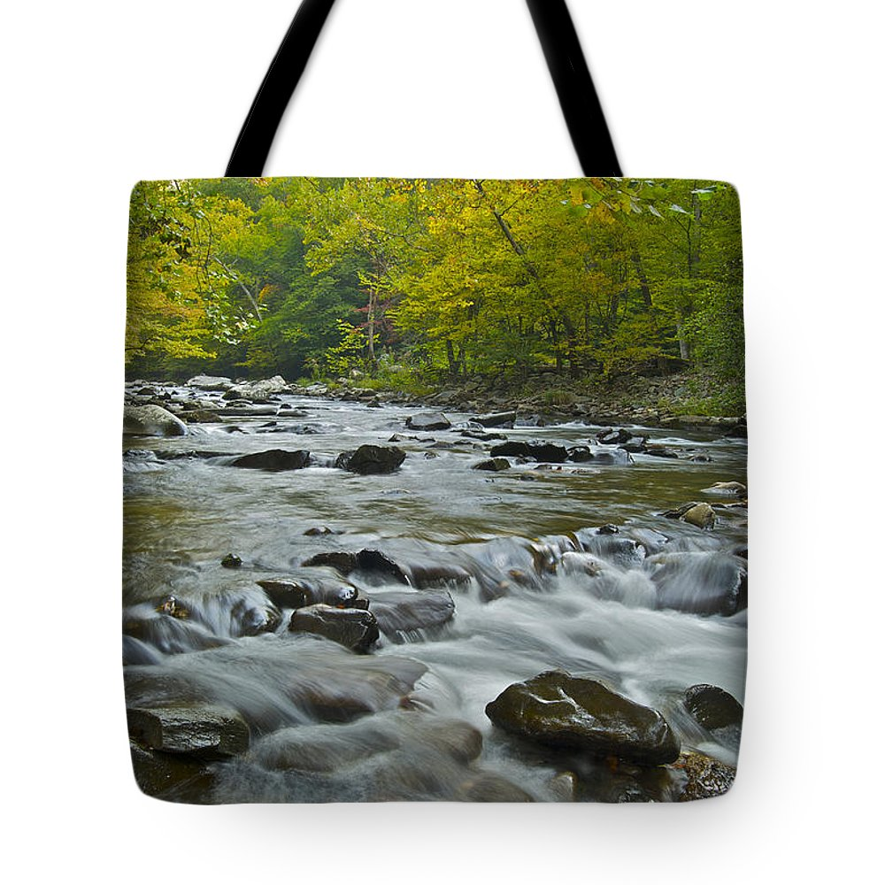Autumn Tote Bag featuring the photograph Tennessee Stream 6031 by Michael Peychich