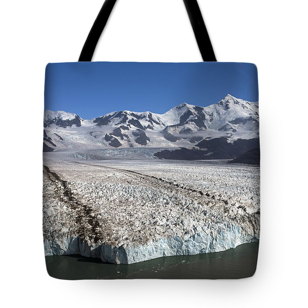 Mp Tote Bag featuring the photograph Terminal Moraine Of Nordenskjold by Ingo Arndt