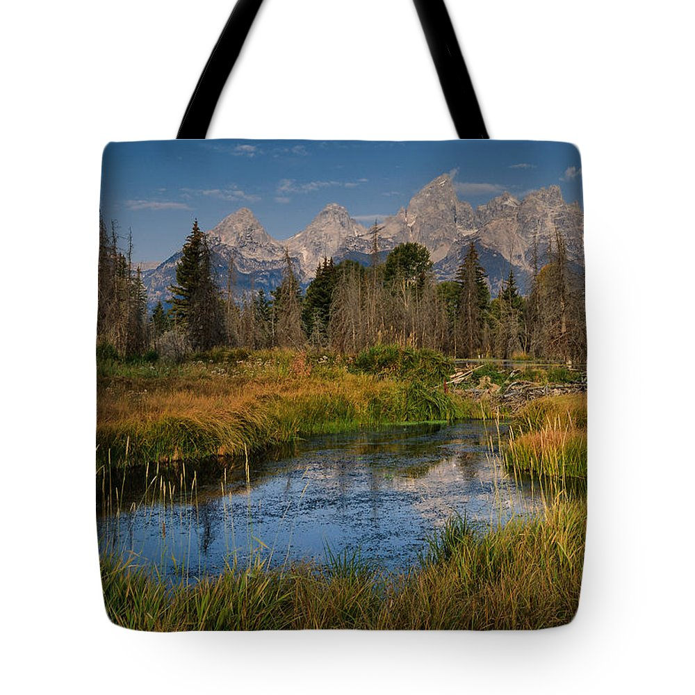 Beaver Pond Tote Bag featuring the photograph Teton Fall by Charlie Choc