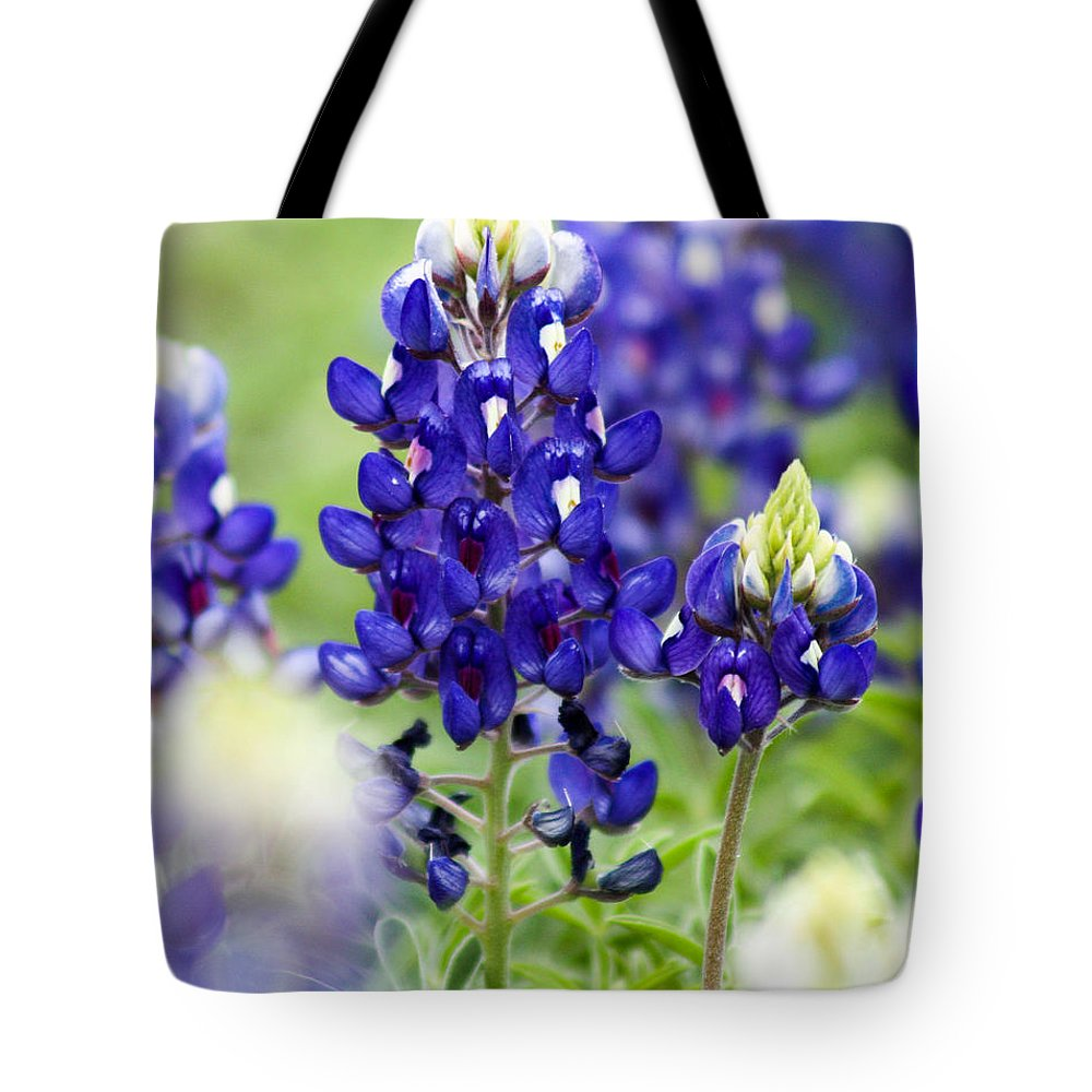 Flowers Tote Bag featuring the photograph Texas Bluebonnets by Toma Caul