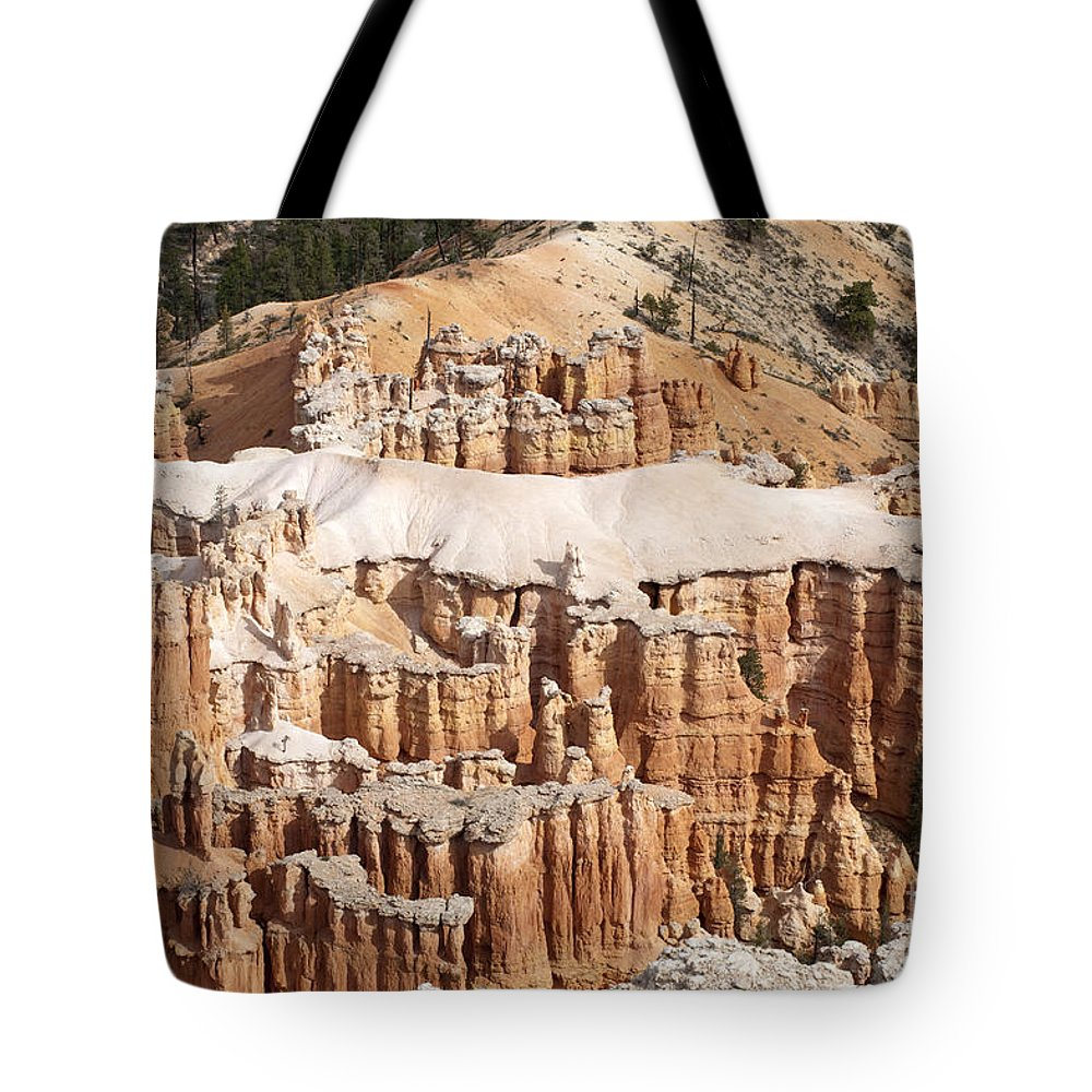 Bryce Canyon Tote Bag featuring the photograph The Allligator by Sandra Bronstein