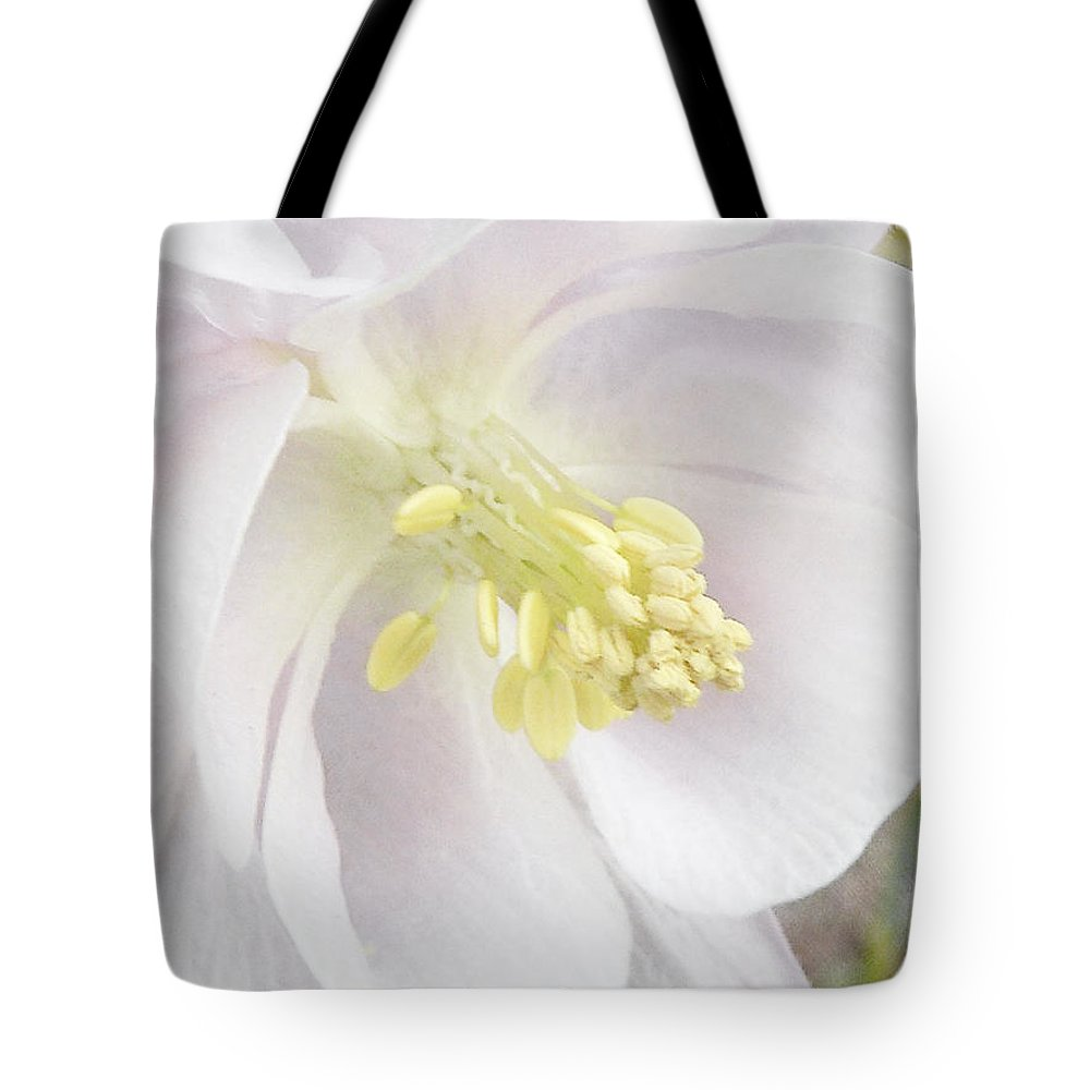 Aquilegia Tote Bag featuring the photograph The Aquilegia Or Columbine Flower by Steve Taylor