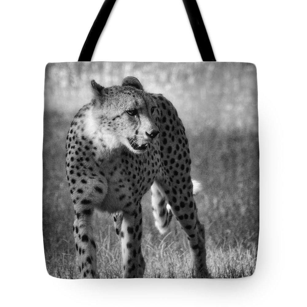 Cheetah Tote Bag featuring the photograph The Cheetah by Saija Lehtonen