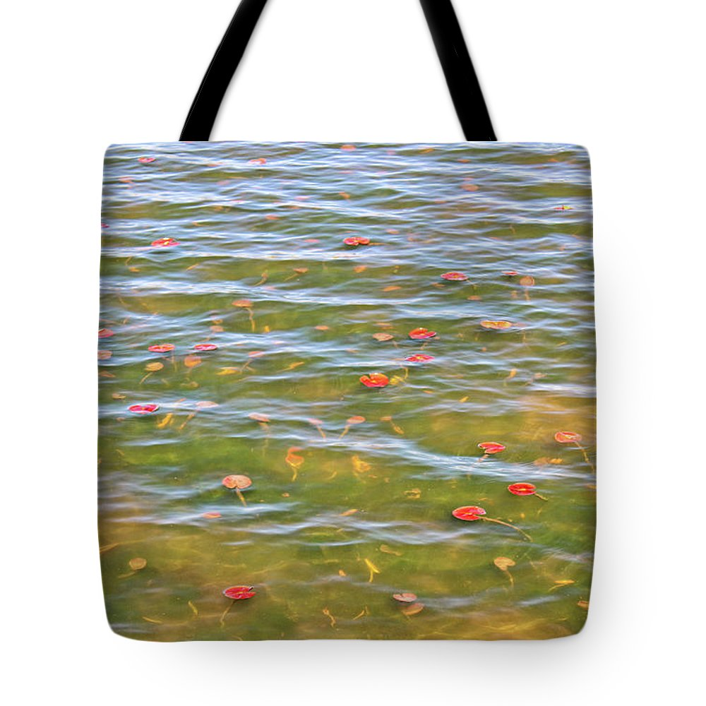 Lily Pads Tote Bag featuring the photograph The Colors Of Lily Pads by Rachel Cohen