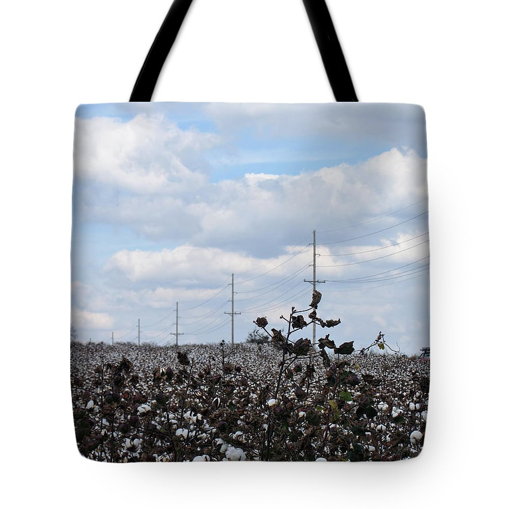 Cotton Tote Bag featuring the photograph The Cotton Crops Of Limestone County Alabama by Kathy Clark