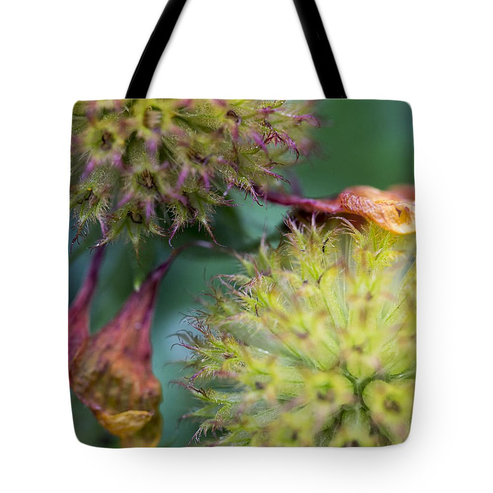 2012 Tote Bag featuring the photograph The End Of Summer by Susan Stone