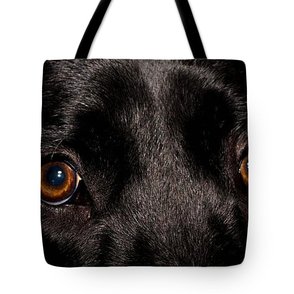 Eyes Tote Bag featuring the photograph The Eyes Have It by Cathy Smith