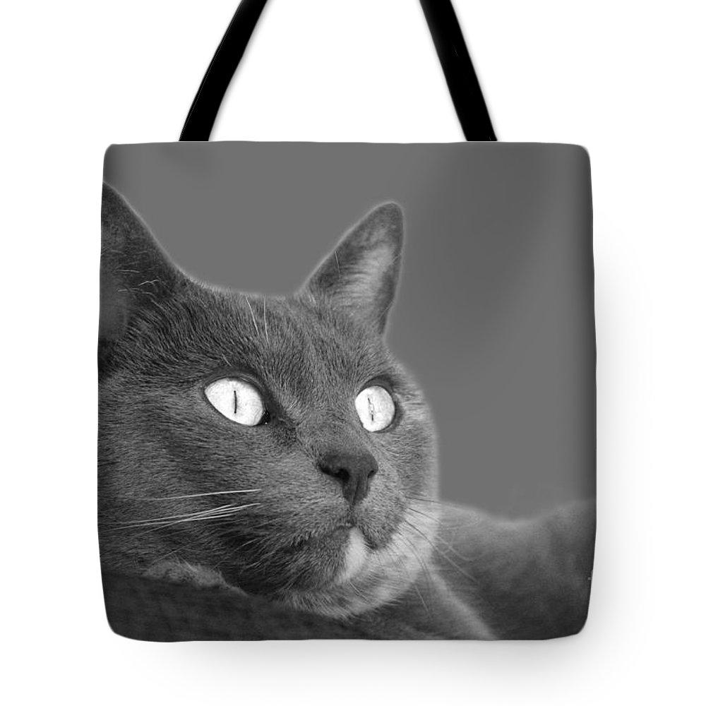 Cat Tote Bag featuring the photograph The Eyes Have It by Nareeta Martin