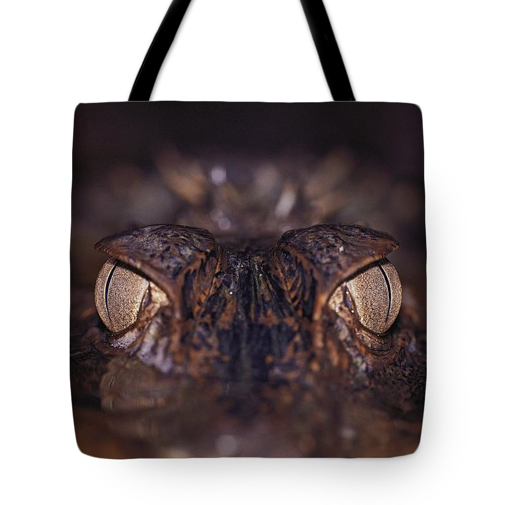 Animals Tote Bag featuring the photograph The Eyes Of A Crocodilian by Mattias Klum