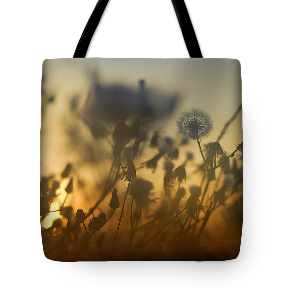 Abstract Tote Bag featuring the photograph The Fire Of The Sun by Guido Montanes Castillo