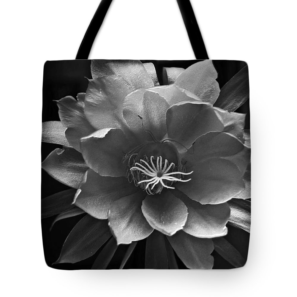 Flower Of One Night Tote Bag featuring the photograph The Flower Of One Night by Tom Bell