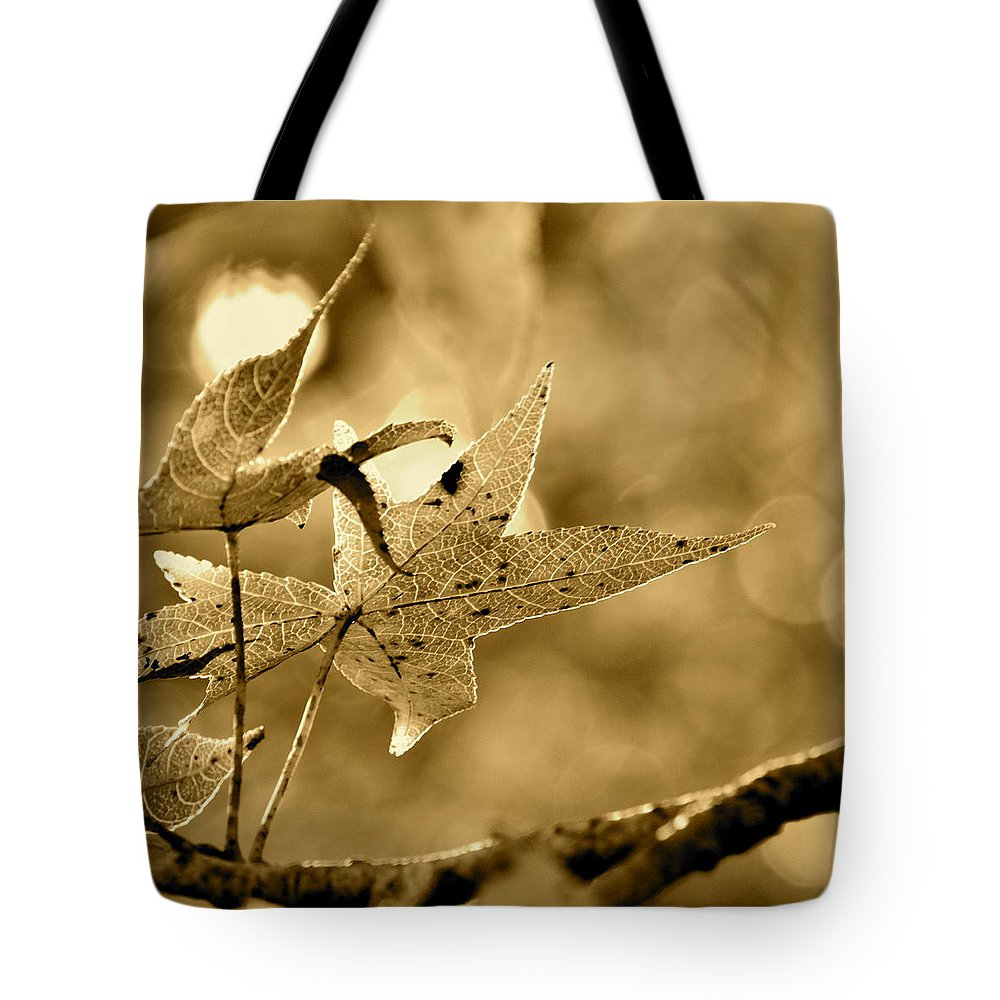 Sepia Tote Bag featuring the photograph The Gum Leaf by JD Grimes