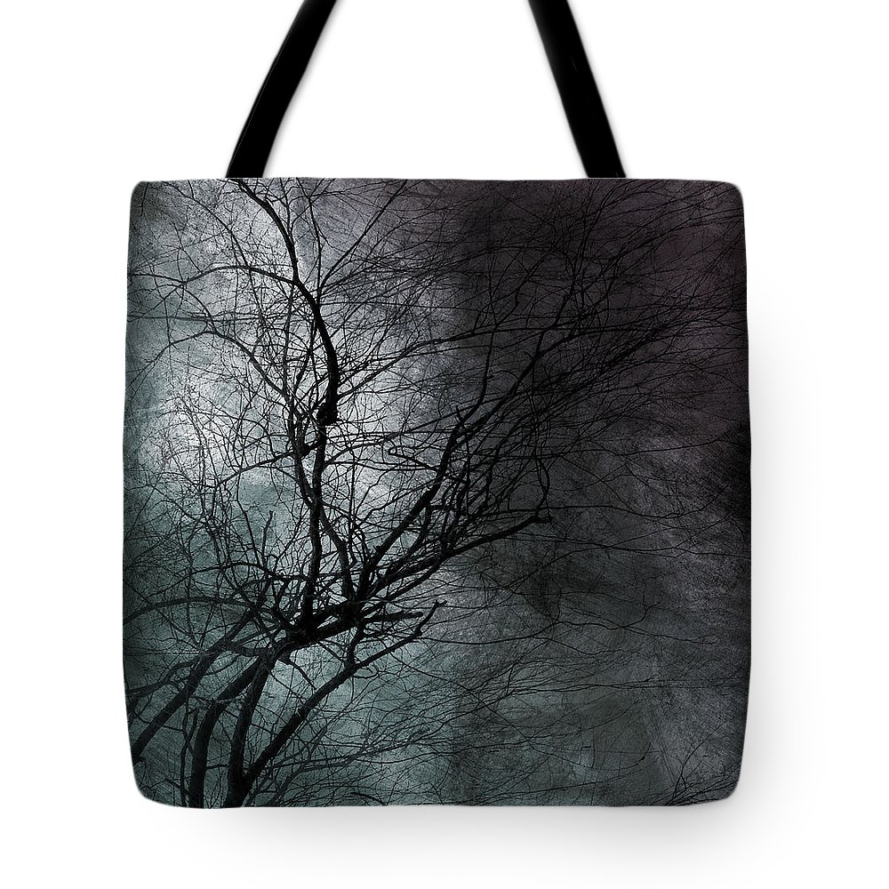 Window Framed Prints Tote Bag featuring the photograph The Haze Of The Moon by The Artist Project