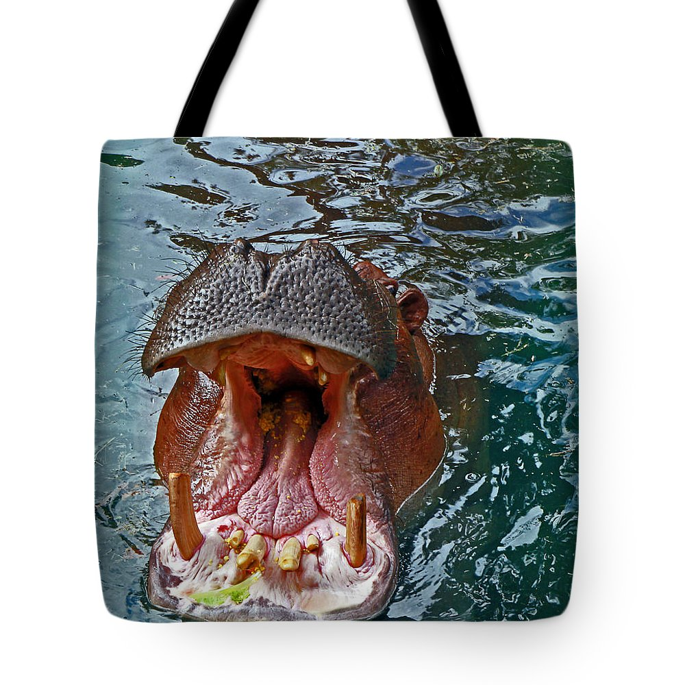 Hippopotamus Tote Bag featuring the photograph The Hungry Hippo by Rebecca Morgan