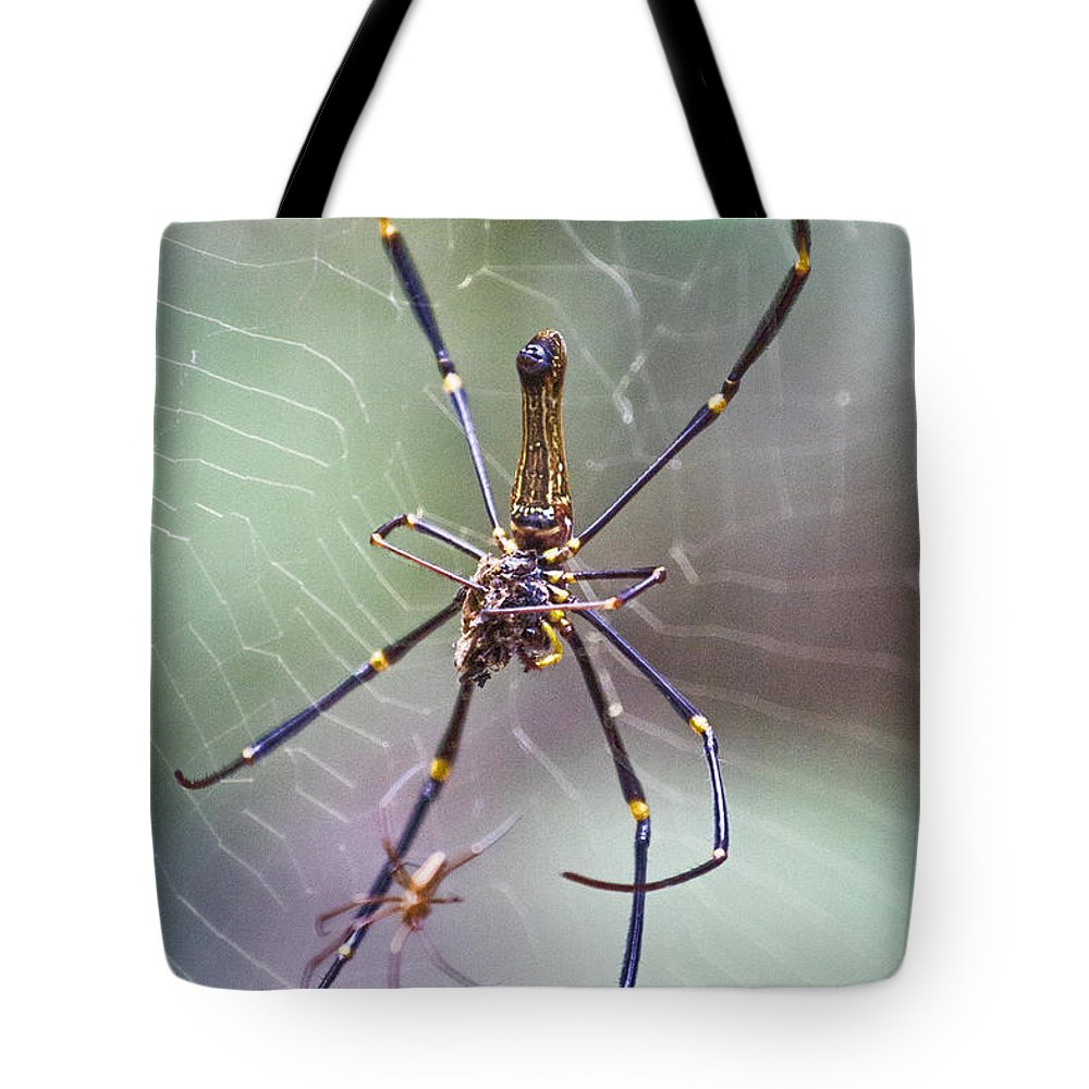 Golden Orb Spider Tote Bag featuring the photograph The Hunter And It's Prey by Douglas Barnard