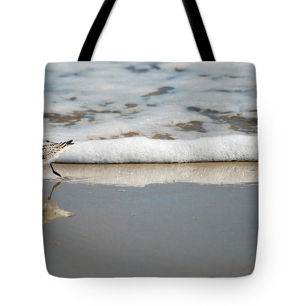 Sandpiper Tote Bag featuring the photograph The Lone Sandpiper by Lori Tambakis