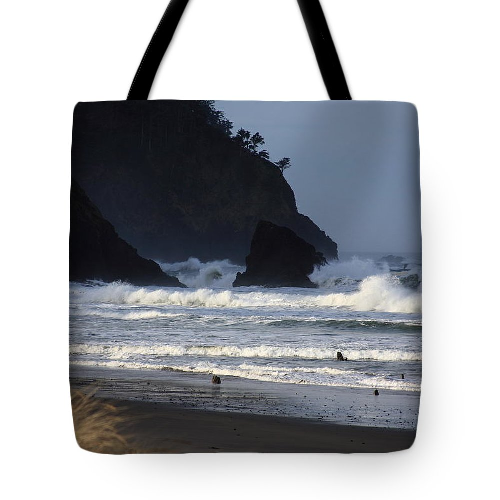 Oregon Coast Tote Bag featuring the photograph The Lost Forest by John McManus
