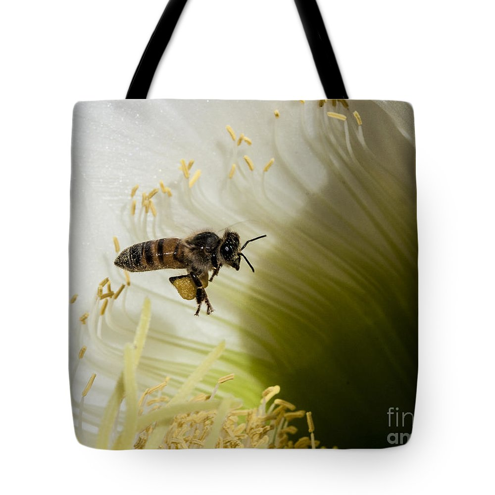 California Tote Bag featuring the photograph The Overloaded Bee by Darcy Michaelchuk