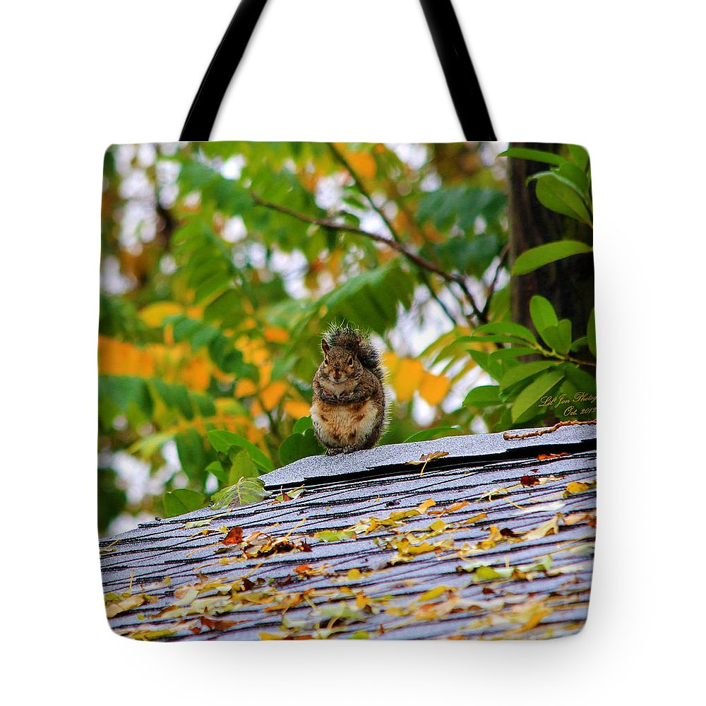 Squirrel Tote Bag featuring the photograph The Poser II by Jeanette C Landstrom