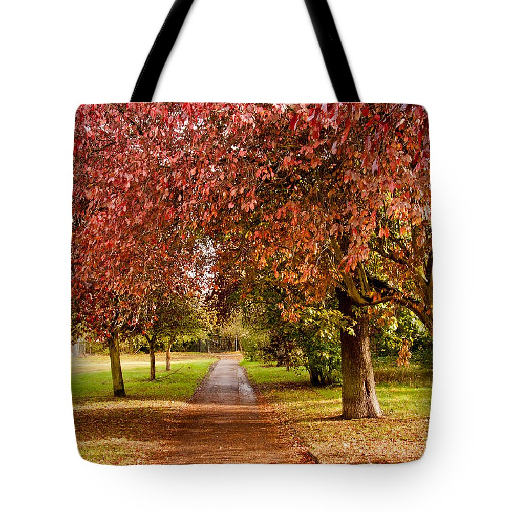 Autumn Tote Bag featuring the photograph The Red Path by Dawn OConnor