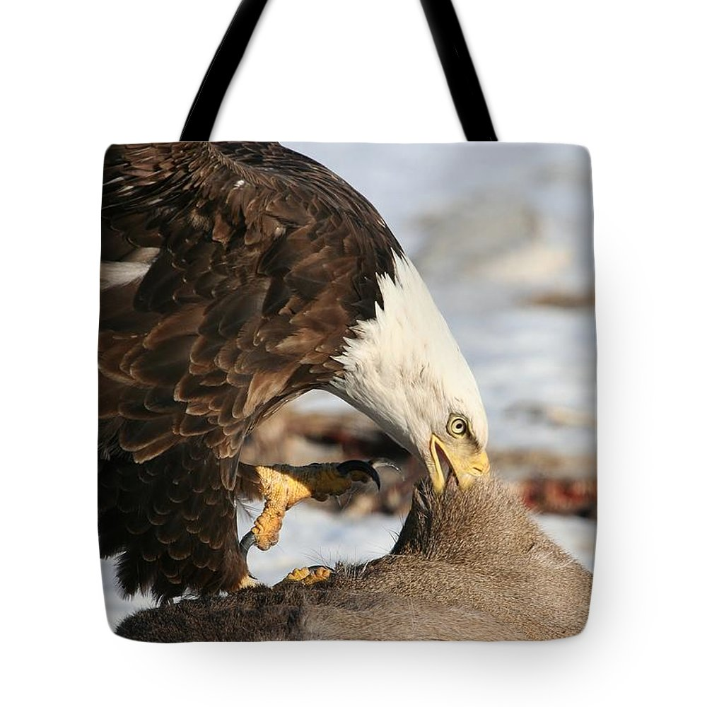 Bald Eagle Tote Bag featuring the photograph The Ripper by Teresa McGill
