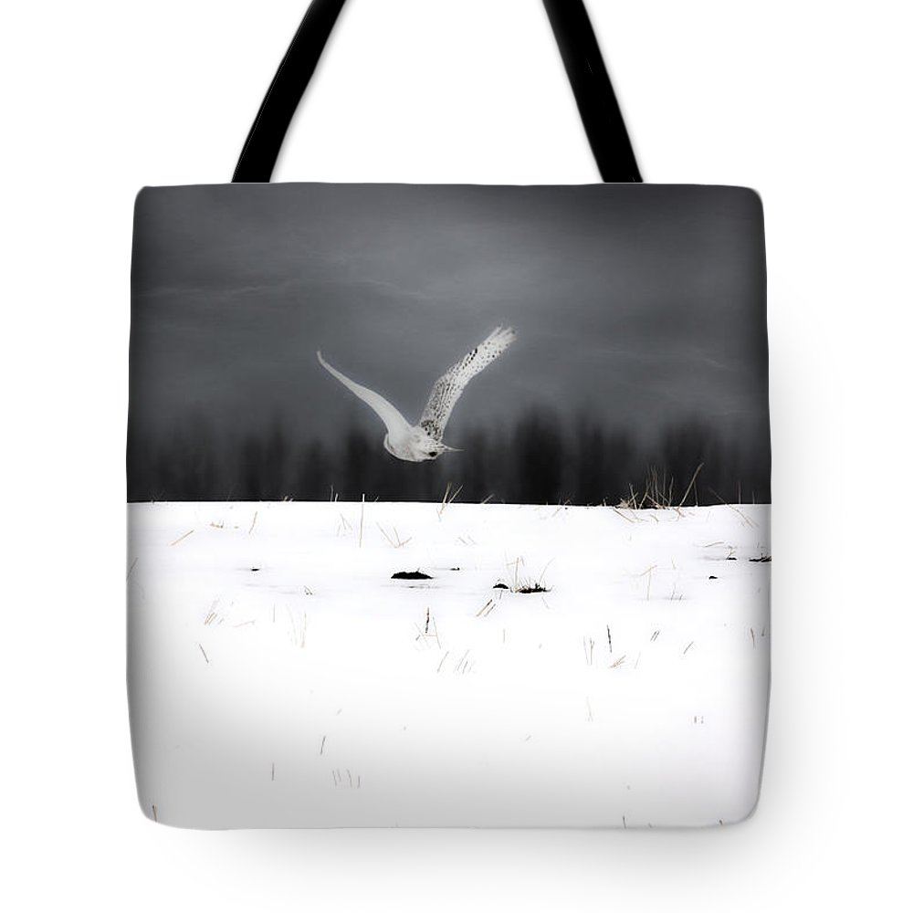 Snowy Owl Tote Bag featuring the photograph The Search by The Artist Project