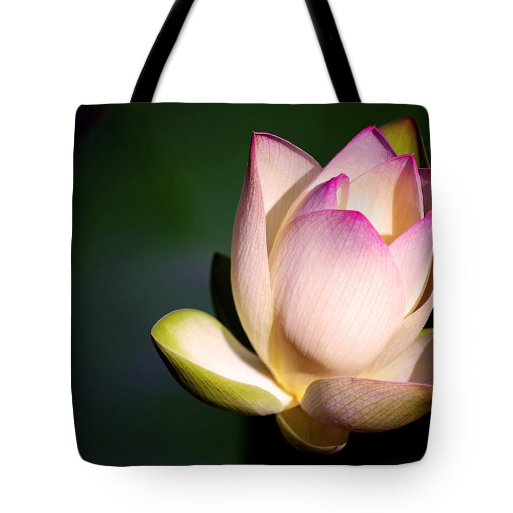 Flower Tote Bag featuring the photograph The Silent One by Melanie Moraga