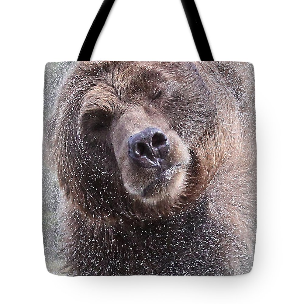 Grizzly Bear Tote Bag featuring the photograph The Spin Cycle by Athena Mckinzie