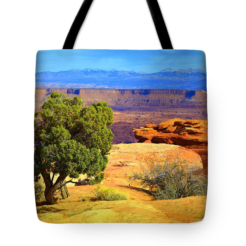 White Rim Trail Tote Bag featuring the photograph The Tree The Canyon And The Mountains by Tara Turner
