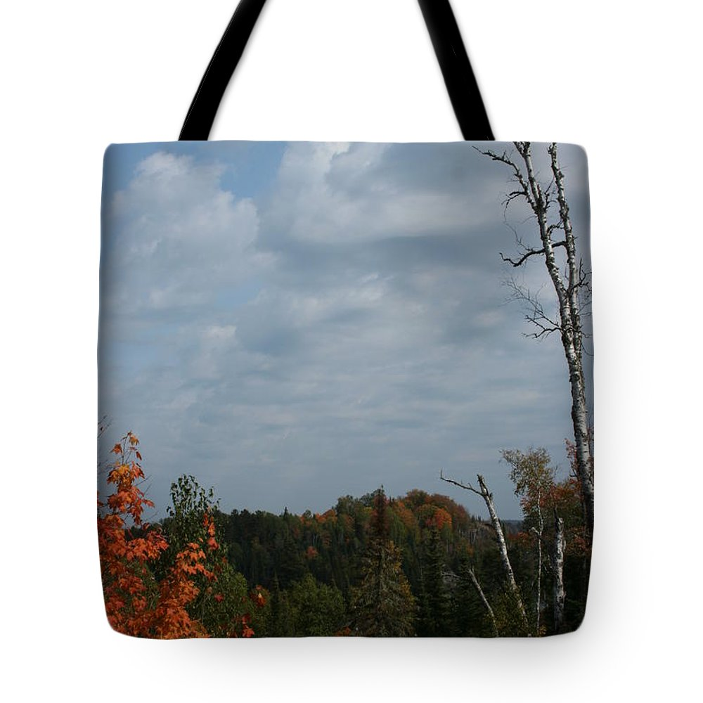 Tote Bag featuring the photograph The View by Joi Electa