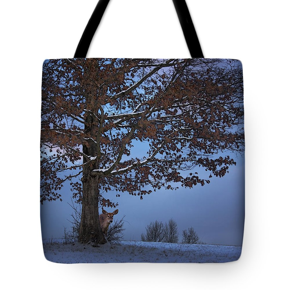 Ron Jones Tote Bag featuring the photograph The Wary Model by Ron Jones