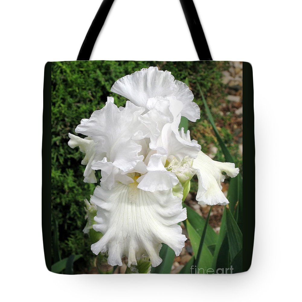 Greenery Tote Bag featuring the photograph The White Iris by Phyllis Kaltenbach