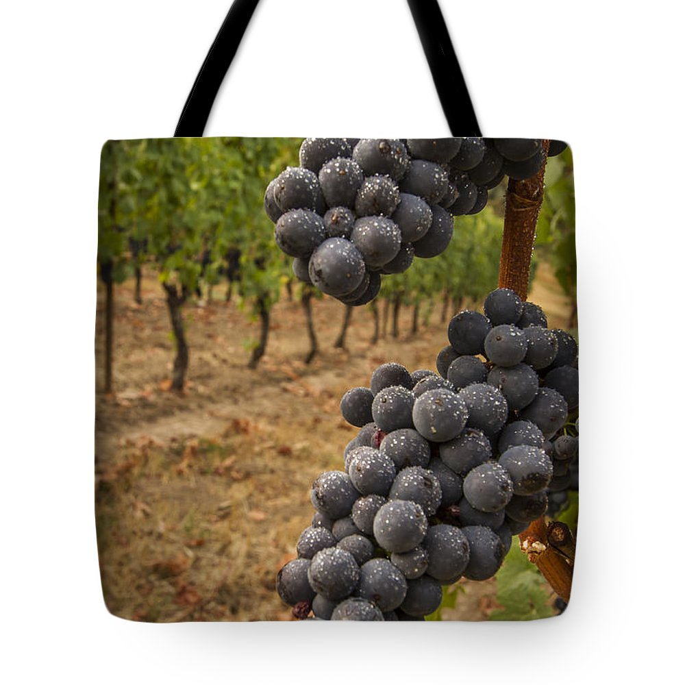 Vineyard Tote Bag featuring the photograph They Stand Alone by Jean Noren