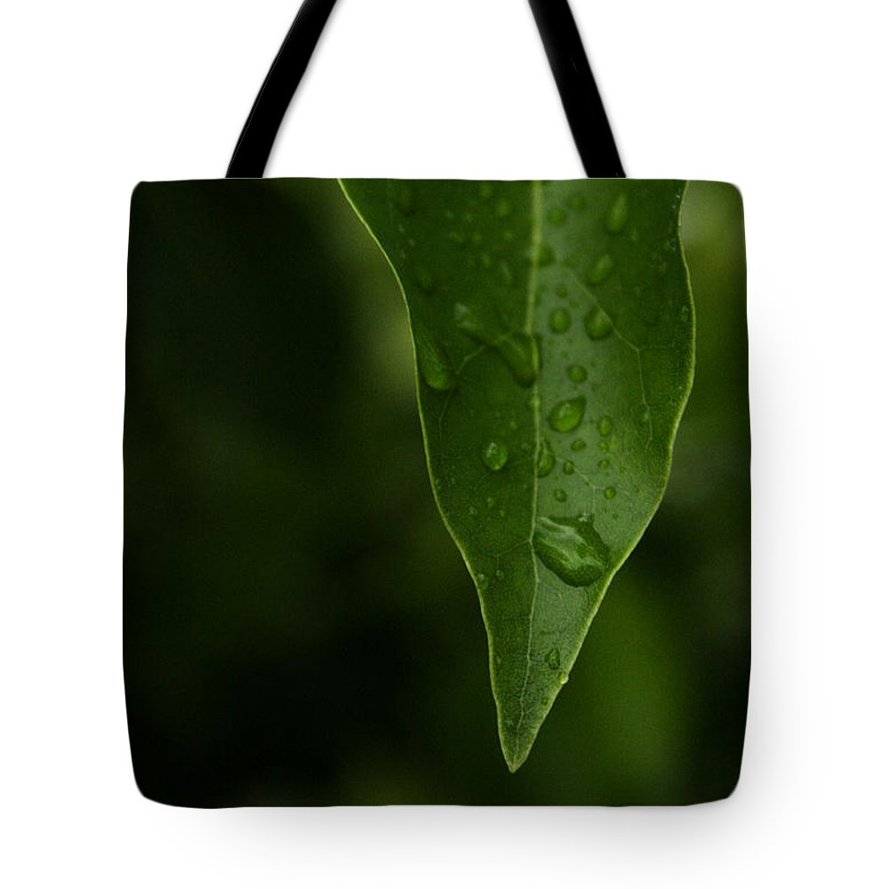 Water Tote Bag featuring the photograph Thirst by Shannon Tibbetts