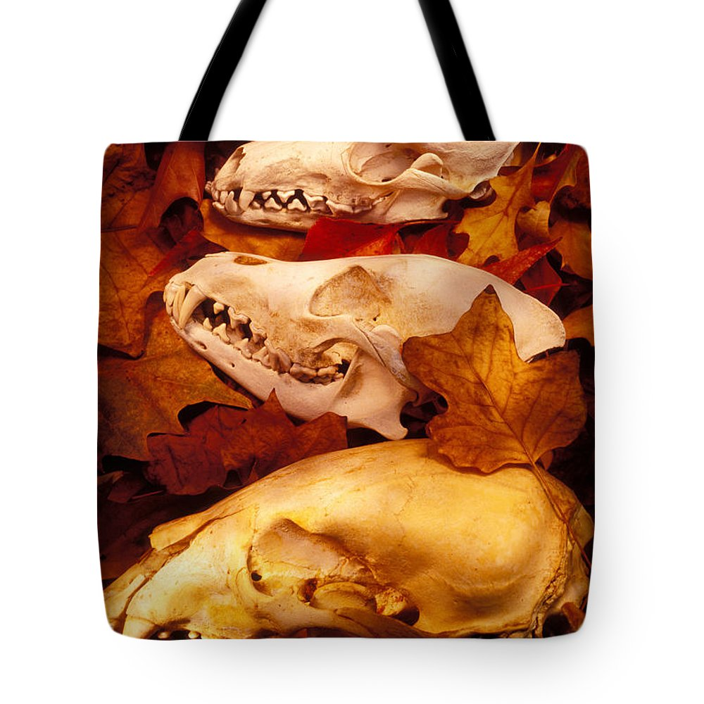Three Animal Skulls Tote Bag featuring the glass art Three Animal Skulls by Garry Gay