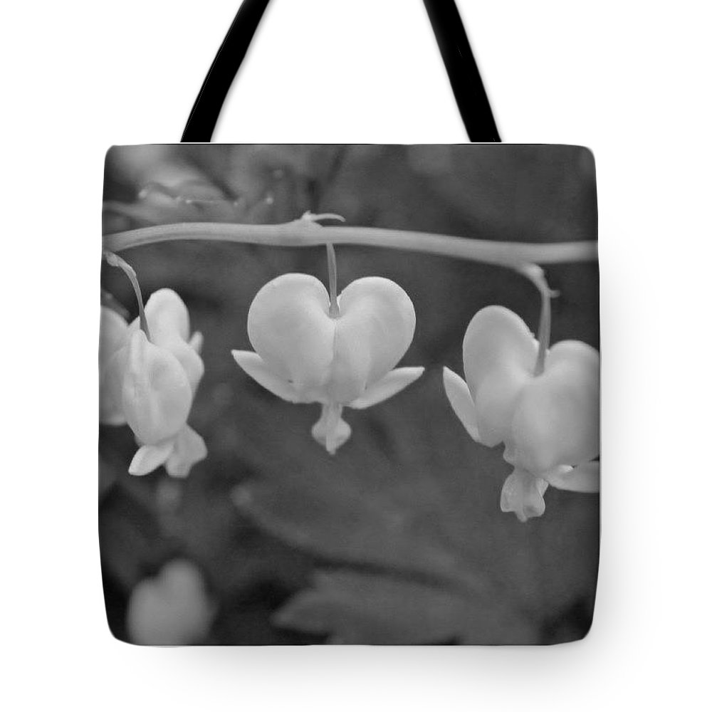 Flowers Tote Bag featuring the photograph Three Bleeding Hearts In Bw by Justin Connor