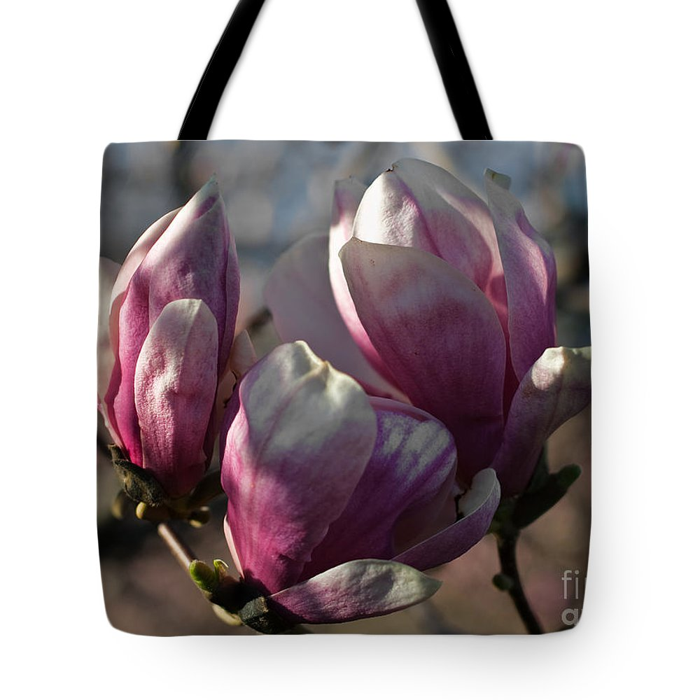 Flowers Tote Bag featuring the photograph Three Sisters by Barbara McMahon