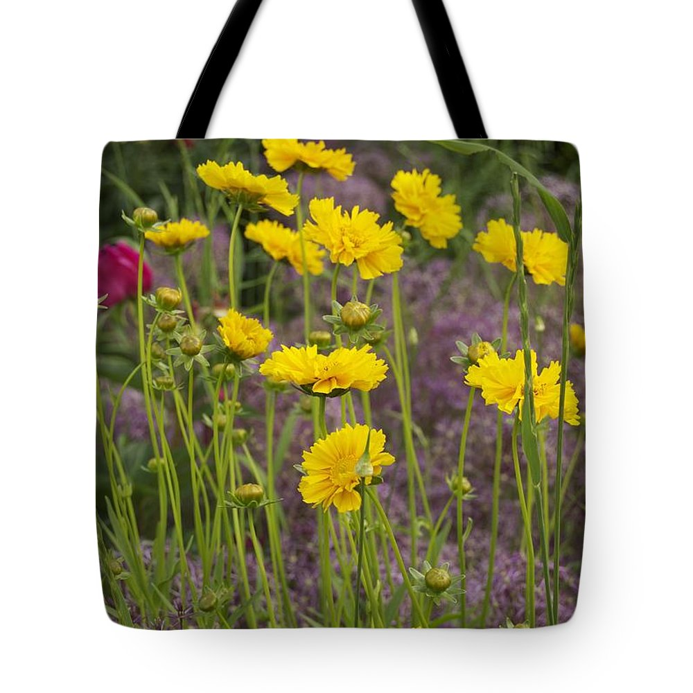 Tick Seed Tote Bag featuring the photograph Tick Seed 2229 by Michael Peychich