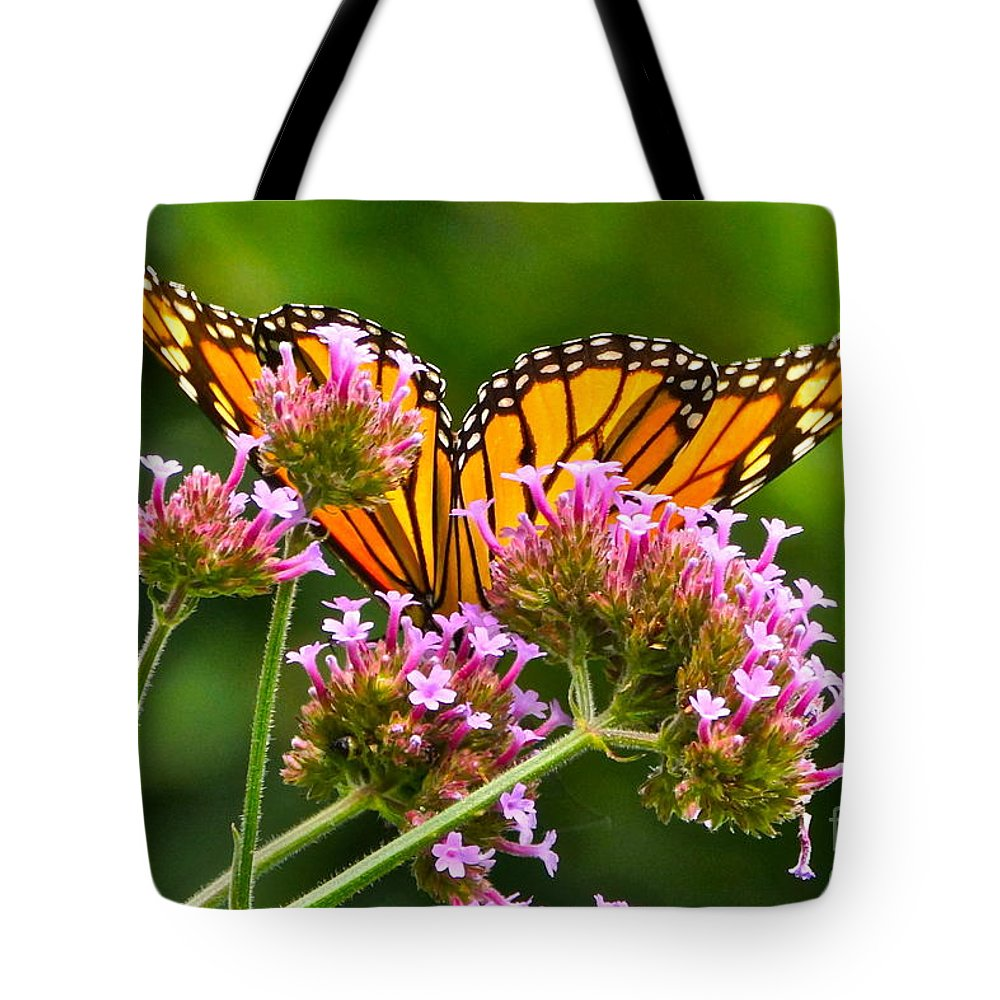 Monarch Butterfly On Pink Flowers Tote Bag featuring the photograph Tiffany Wings And Flowers by Byron Varvarigos