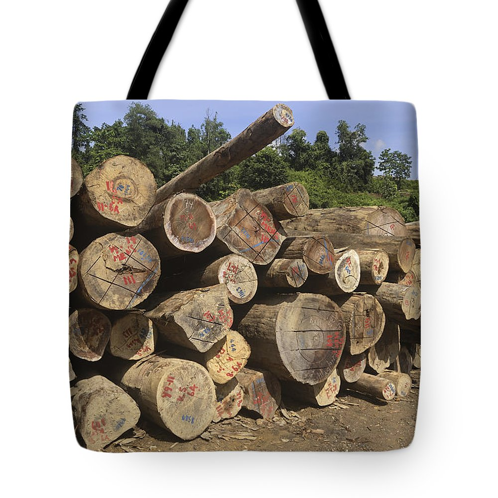 Mp Tote Bag featuring the photograph Timber At A Logging Area, Danum Valley by Thomas Marent