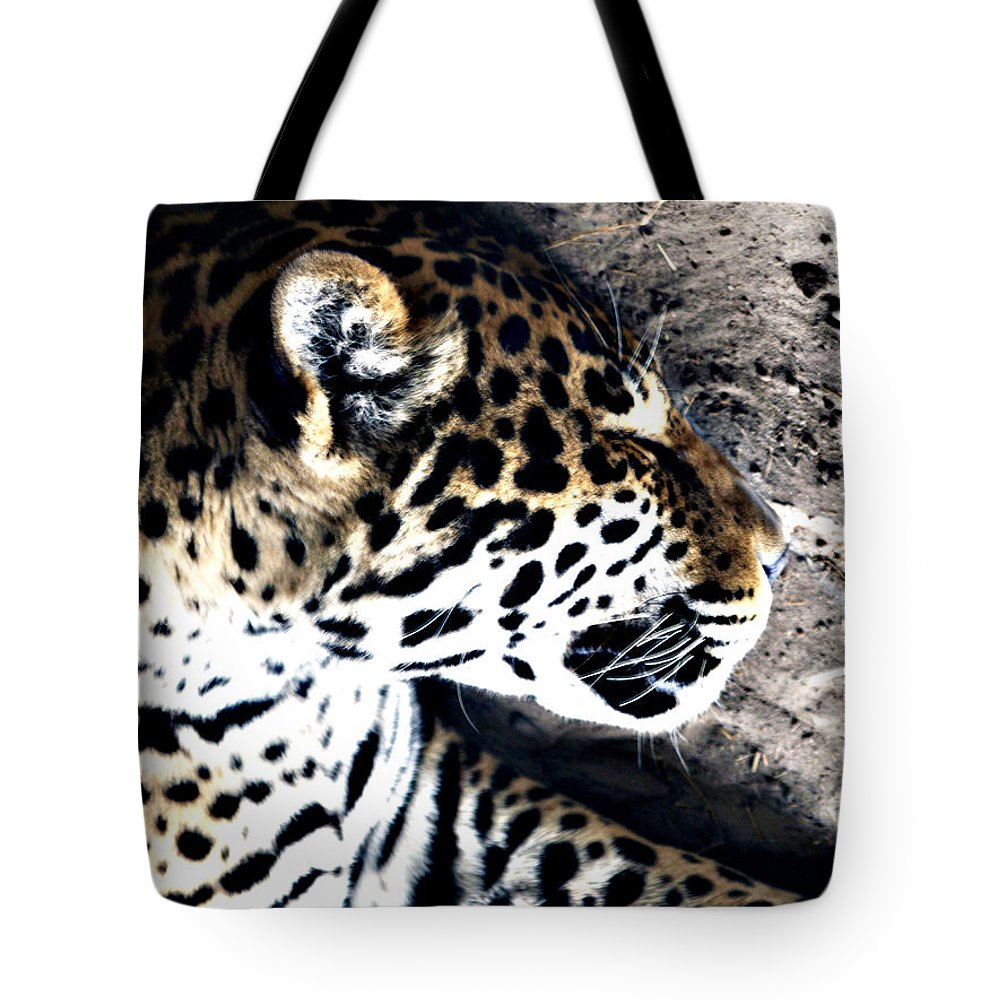 Tote Bag featuring the photograph Time For A Snooze by Bob Johnson