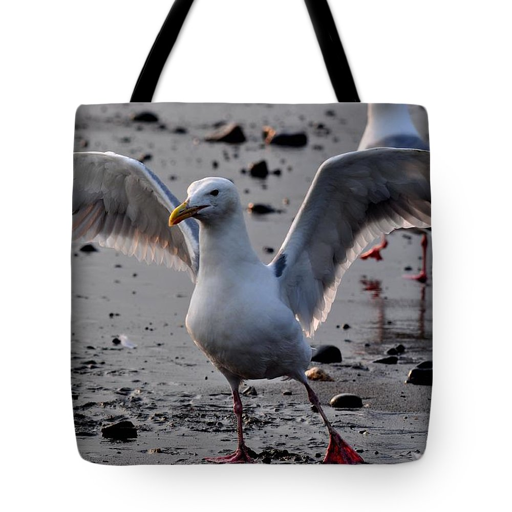 Seagulls Tote Bag featuring the photograph Timeless Wings by Debra Miller