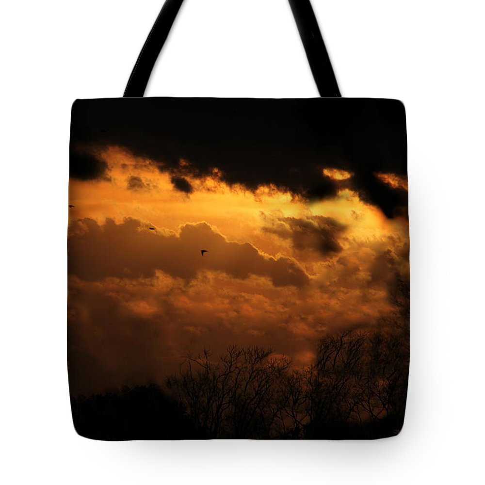 Sunset Tote Bag featuring the photograph Tn Sunset Nov-11 by Ericamaxine Price
