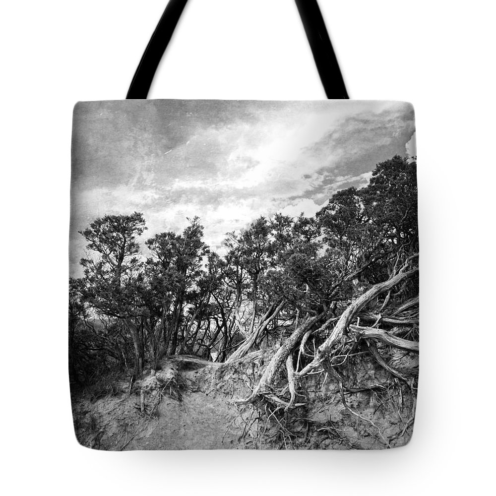 Trees Tote Bag featuring the photograph To The Top by The Artist Project