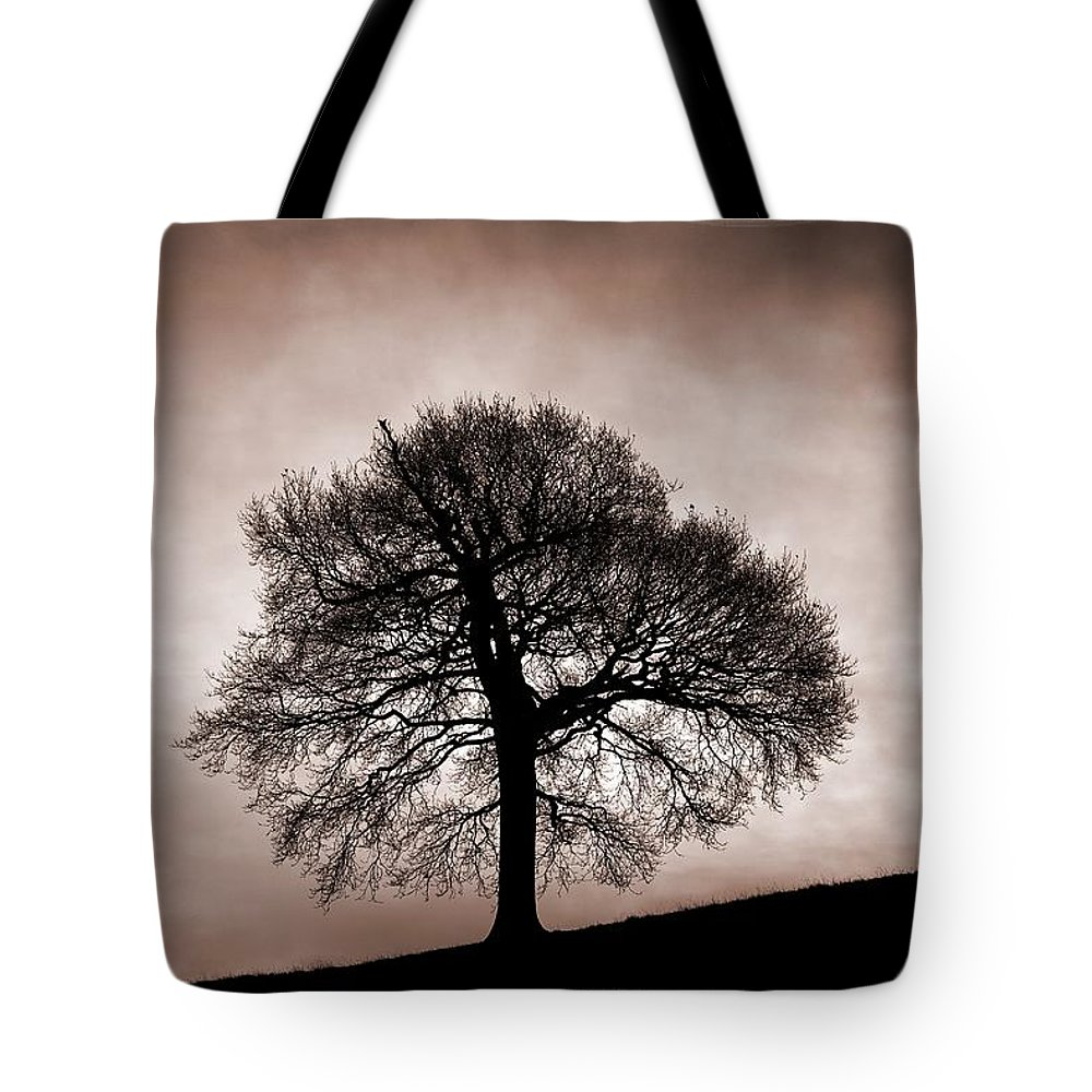 Nottinghamshire Tote Bag featuring the photograph Tree Against A Stormy Sky by Chris Upton