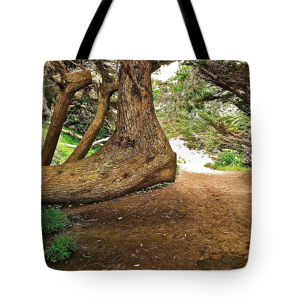 Tree Tote Bag featuring the photograph Tree And Trail by Bill Owen
